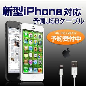 iPhone5 ケーブル Lightningケーブル.png